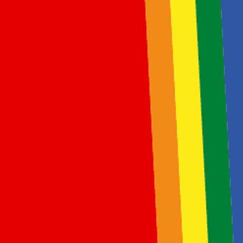 Afbeelding van Pride en de strijd voor inclusiviteit
